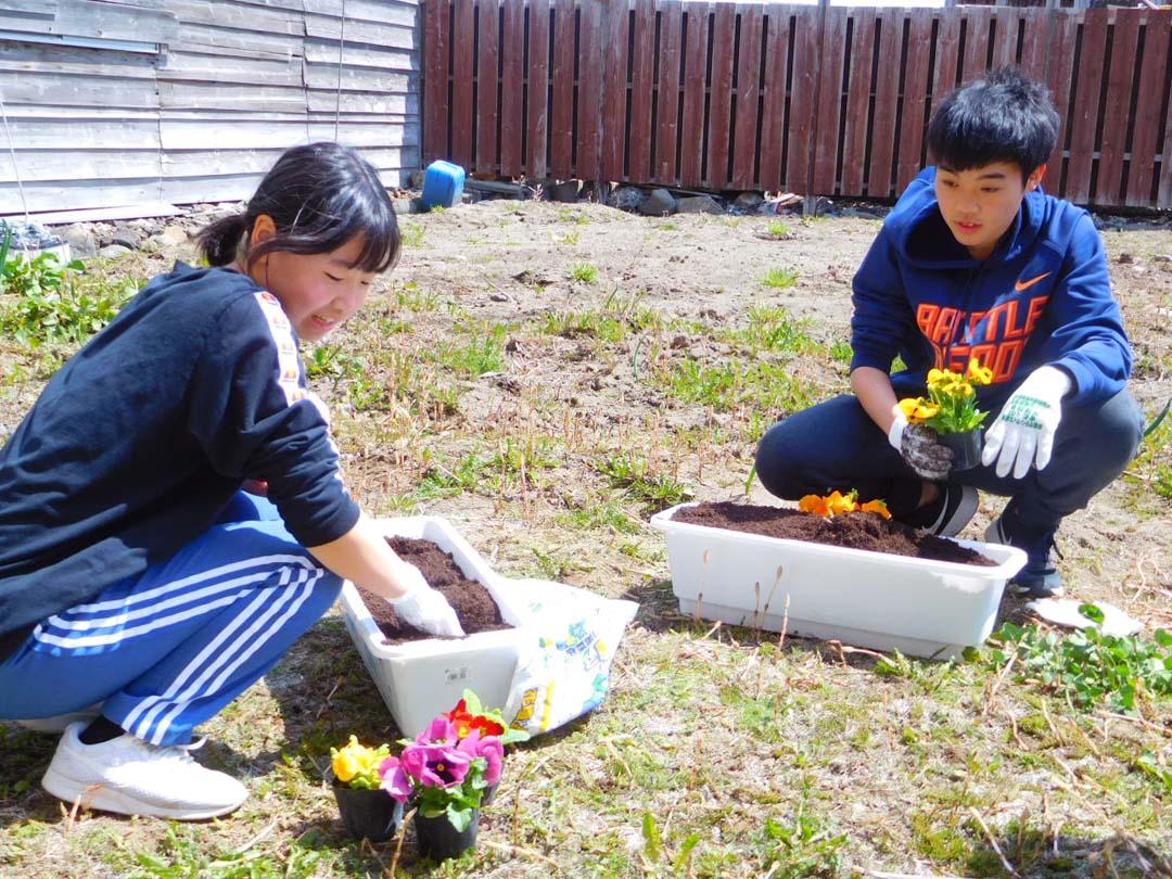 鉢植えをする二人